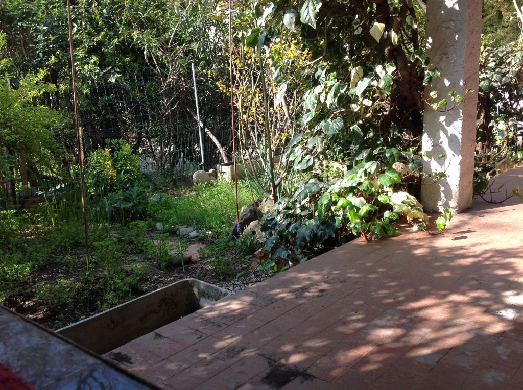Appartement 2 pi ce en rez de chauss e donnant sur for Agence terrasse et jardin lyon